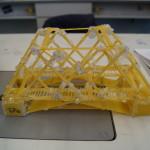 Bei einem anderen Projekt bauen die SuS Brücken aus handelsüblichen Spaghetti.